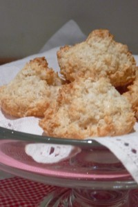 I Should Coconut Macaroons!